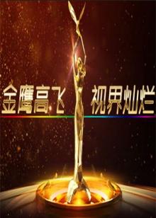 第九届中国金鹰电视艺术节