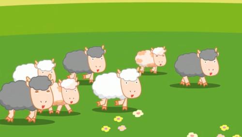 小小羊儿要回家