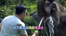 萌娃转型大象搓澡工
