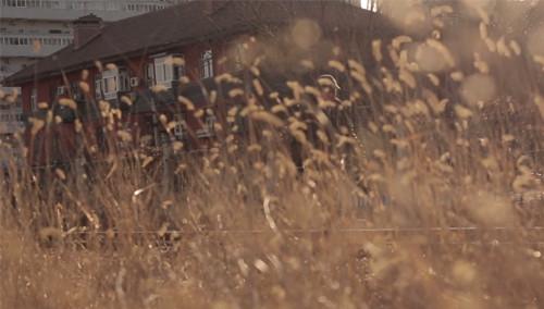 第二十七期:日光下的拍摄技巧