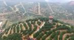 新宁崀山挤橙采摘节
